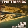 triffids - born sandy