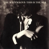 waterboys - this is the sea